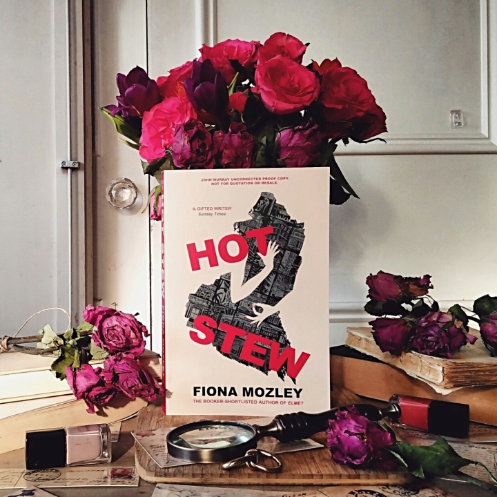 Book Review: Hot Stew by Fiona Mozley